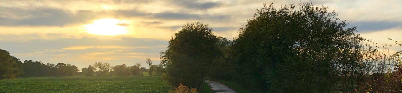 Oderlandblog